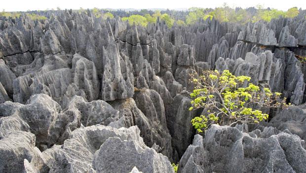 Madagascar, la meilleure destination pour passer les prochaines vacances
